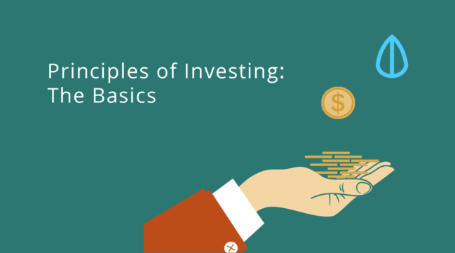principles of investing smallcapasia